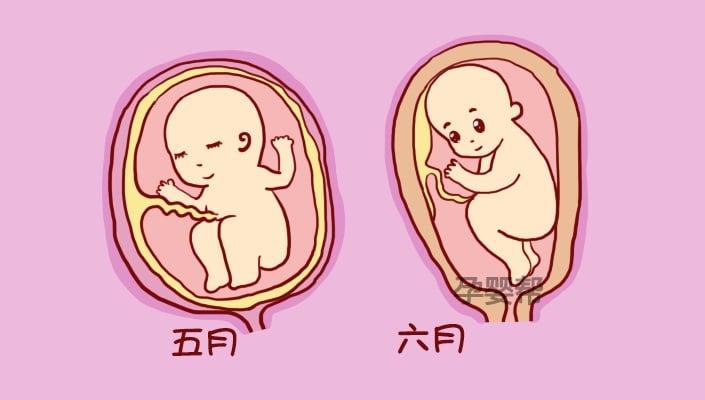 حركة الجنين في الشهر السابع قوية